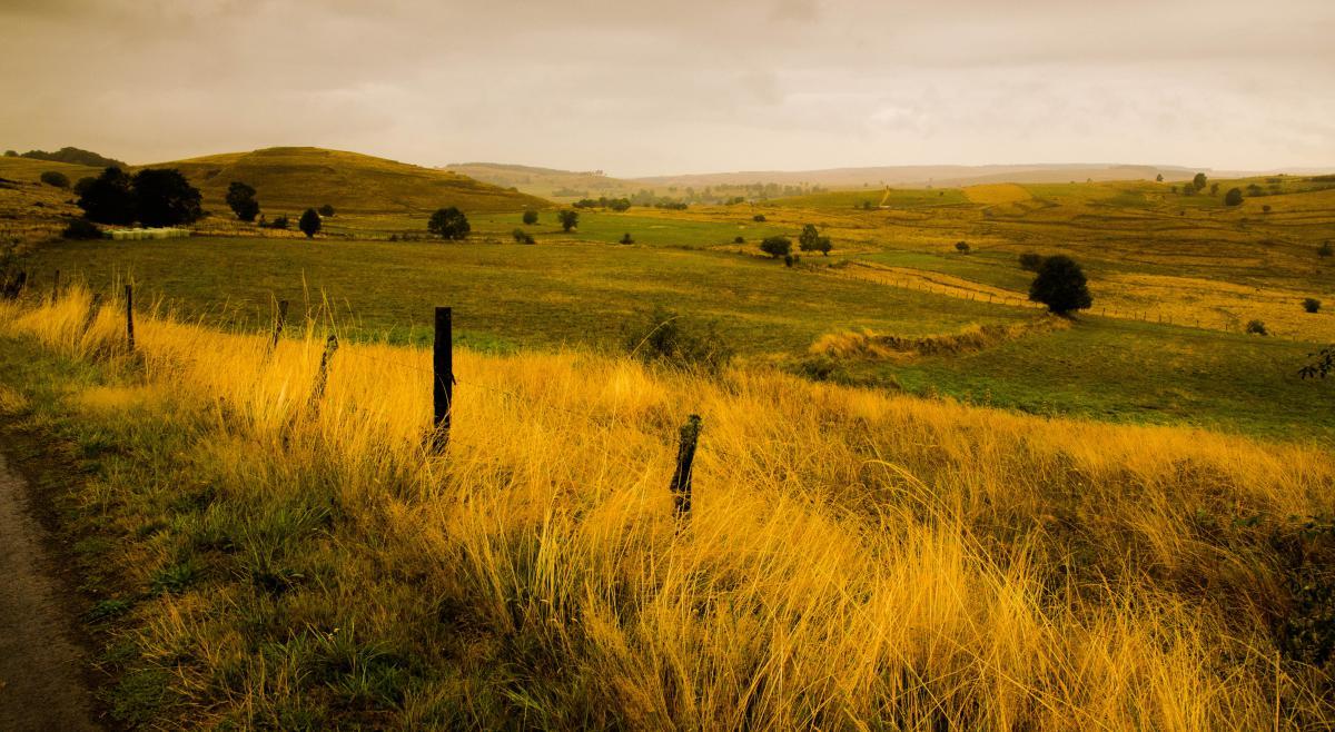 Примеры изображений Nikon 16-80 DX - там где пасутся лошади
