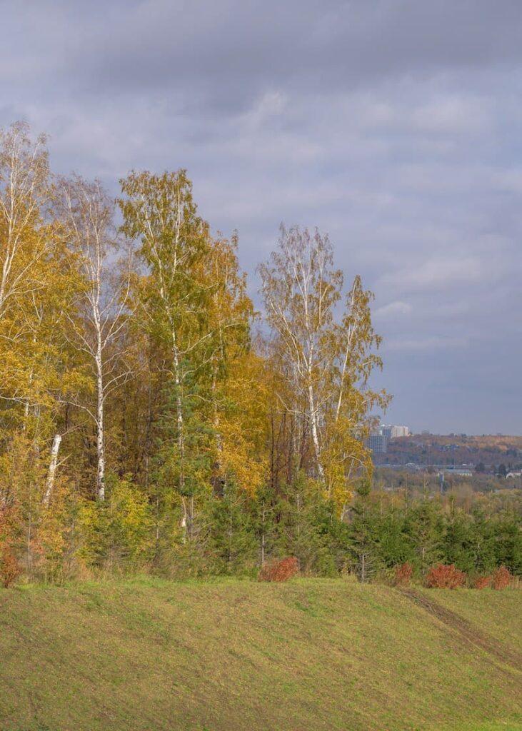 Локация, местоположение фото осенних пейзажей