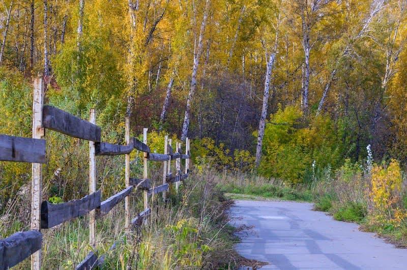 Линии и перспектива в фотографии осенних пейзажей