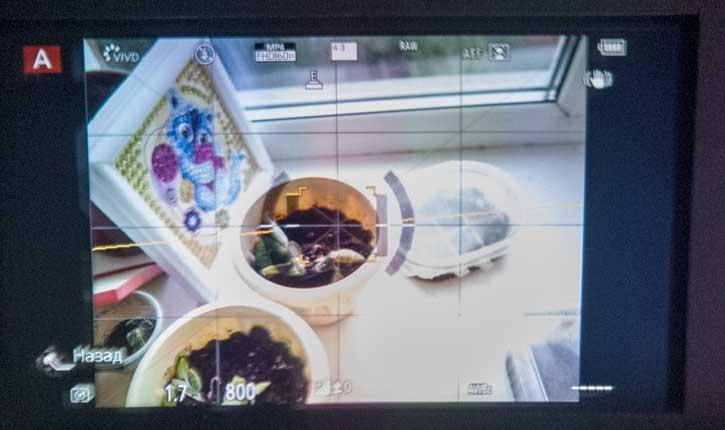 При настройке соотношения сторон кадра 4:3 электронный видоискатель Panasonic GX9 имеет такое же, весьма неудобное соотношение сторон