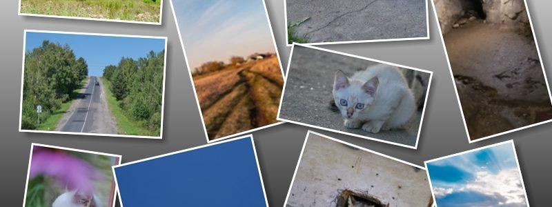 Примеры фотографий, сделанных на Panasonic DC-G9