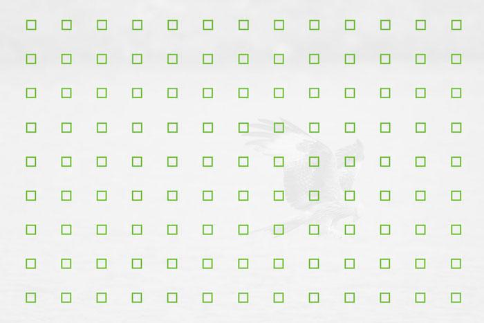 117 точек (сетка 13 × 9)