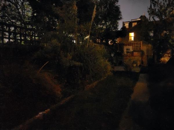 Съемка при слабом освещении на Realme X3 SuperZoom
