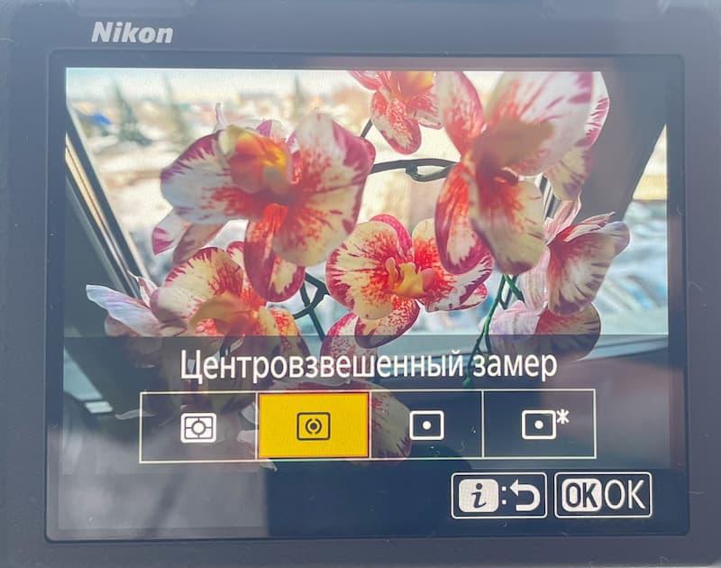 Среднее взвешенное взвешивание обеспечивало сбалансированную экспозицию в этом снимке, который был сделан с объективом 35 мм на зеркальной фотокамере с полным кадром.